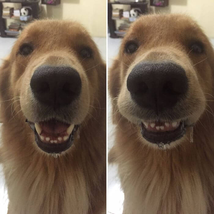before after being called a good boy 21 (1)