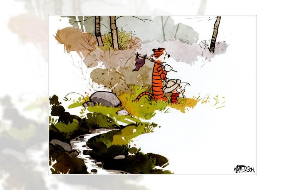 calvin and hobbes comics 11 (1)