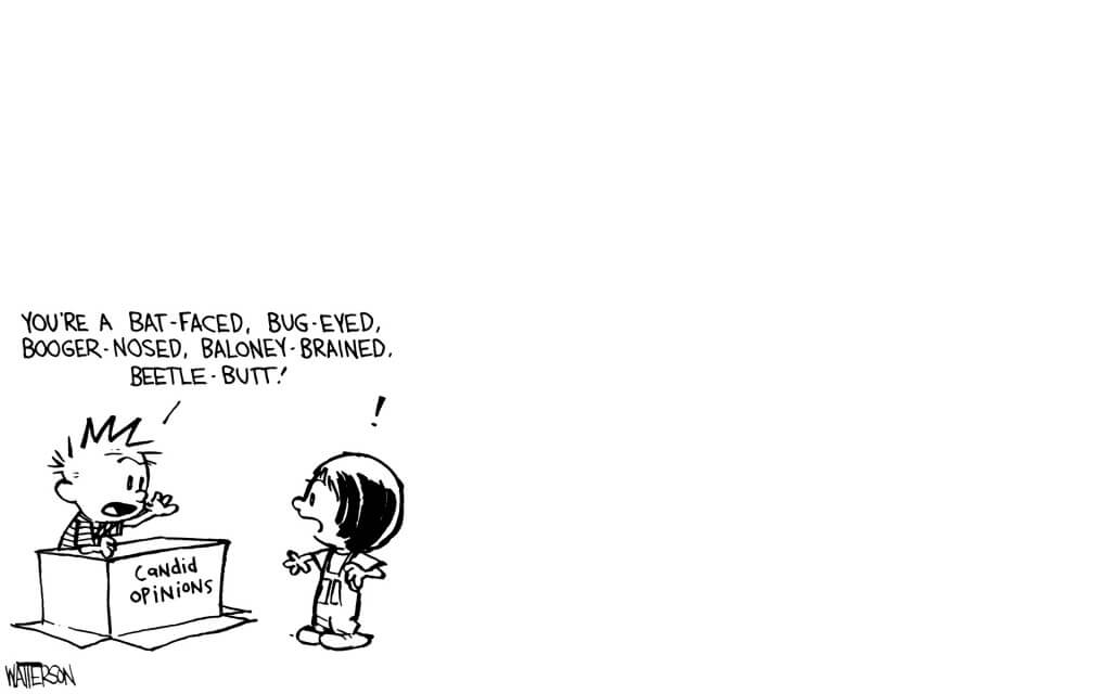 calvin and hobbes pictures 20 (1)