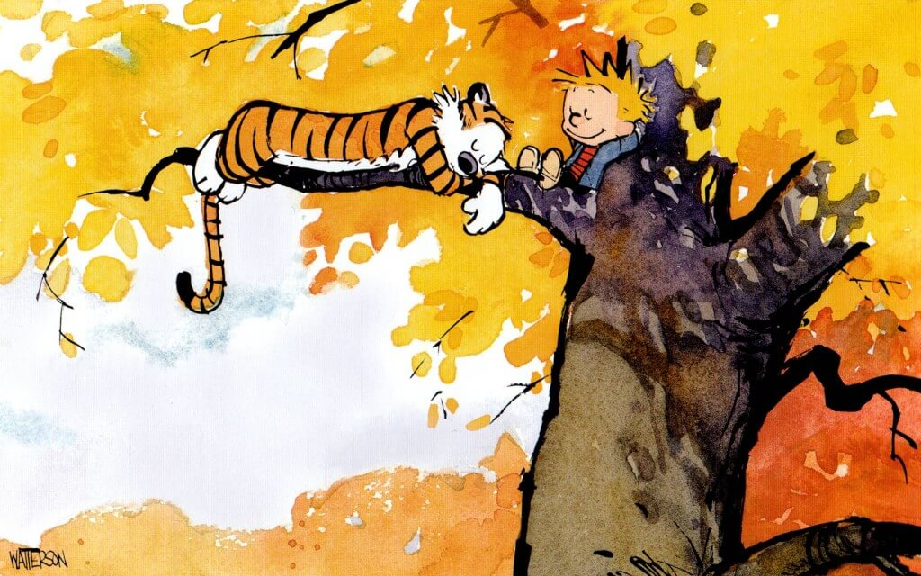 calvin and hobbes pictures 26 (1)
