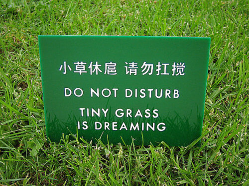 totally funny translations fails 33 (1)