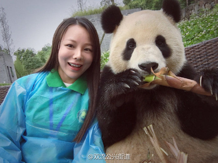 Giant Panda poses for selfies 6 (1)