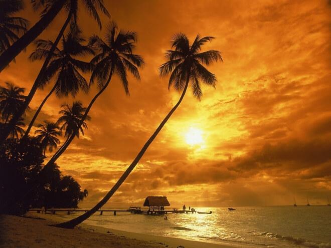 amazing sunrise (1)