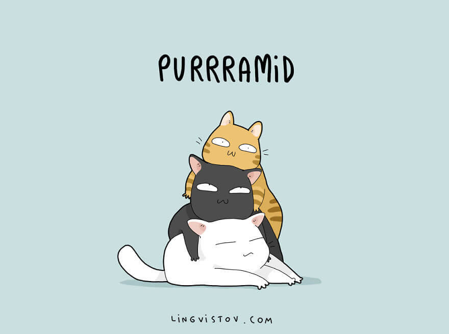 The Only 21 Cat Puns You Will Ever Need Are Right Here