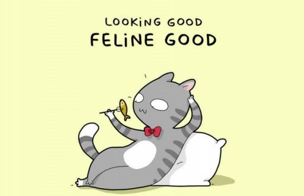 cat puns feat