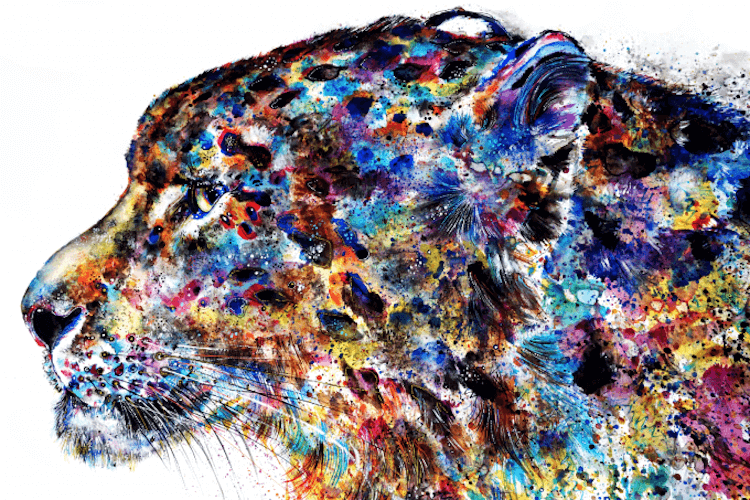 colorful animal artworks 2 (1)
