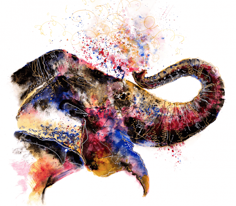 colorful animal artworks 3 (1)