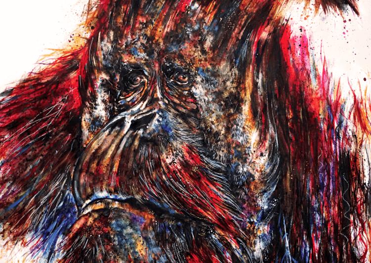 colorful animal artworks 8 (1)