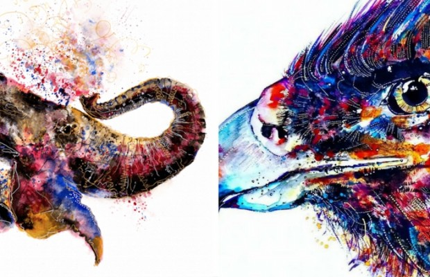 colorful animal portraits feat