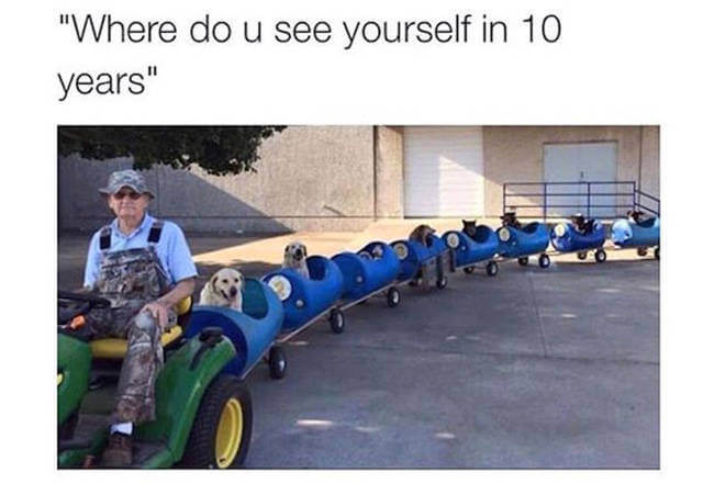 hilarious memes about life 2 good (1)