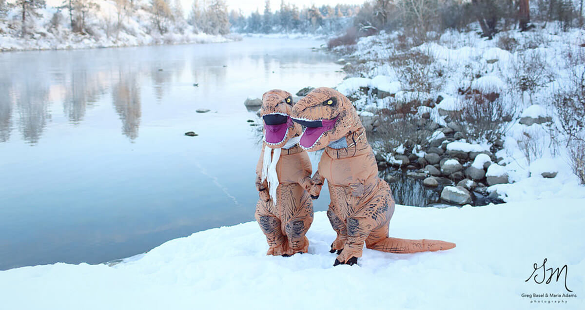 funny t rex photos 2 (1)