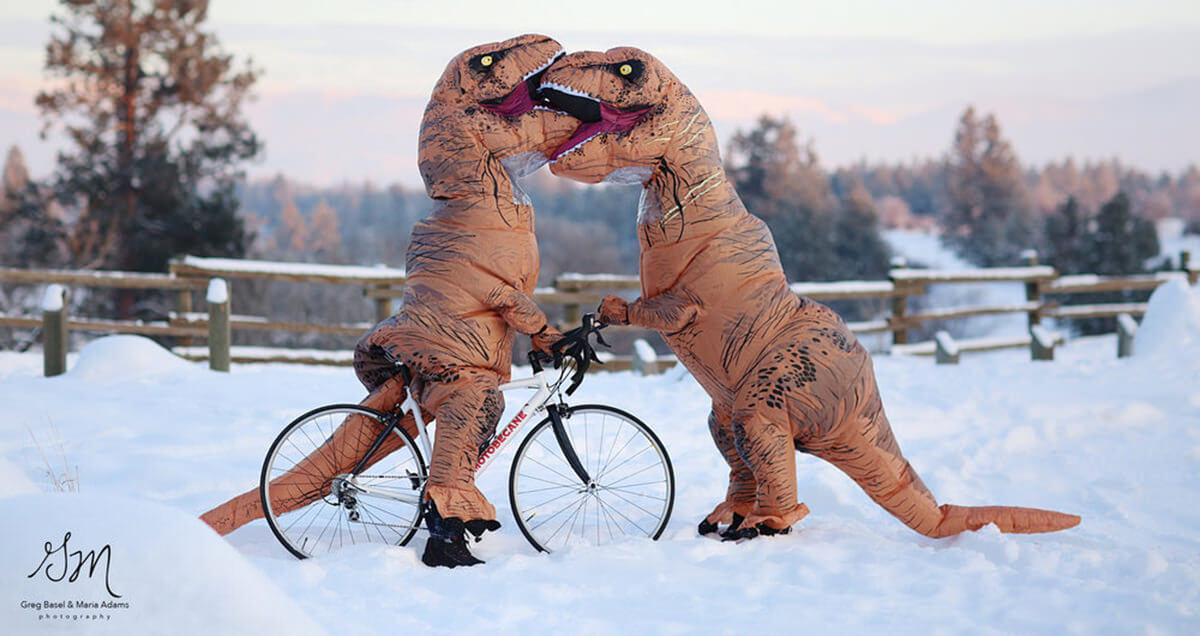 funny t rex photos 3 (1)
