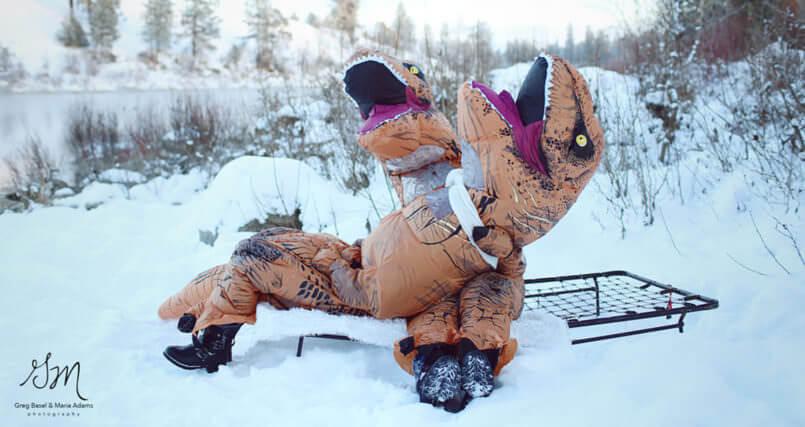 funny t rex photos 4 (1)
