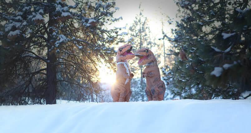 funny t rex photos 5 (1)