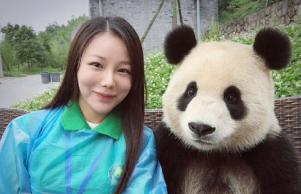 giant panda poses for selfies feat