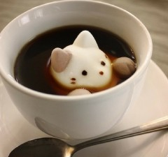 marshmallows cats feat