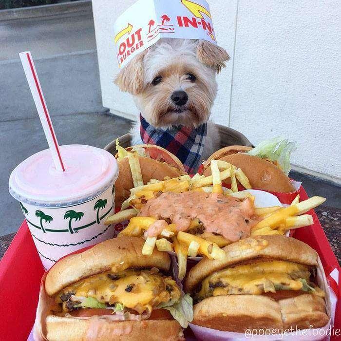 popeye instagram food blog 12 (1)