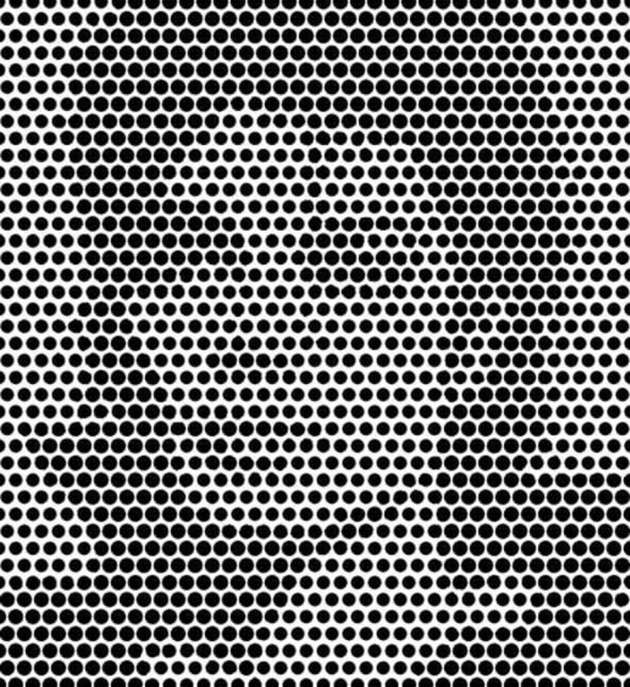 optical illusions 13