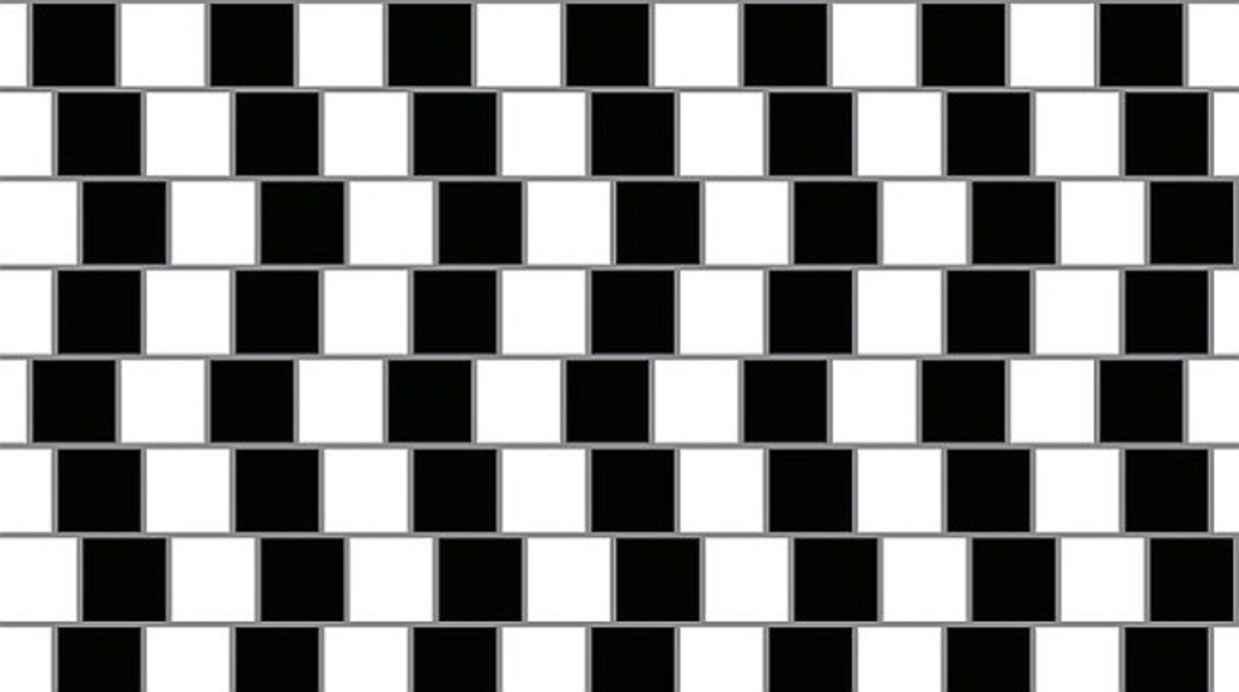 whoa illusions 22