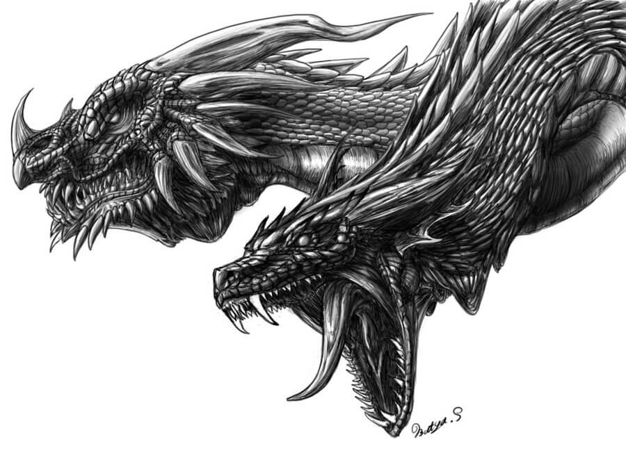 amazing dragons 5 (1)