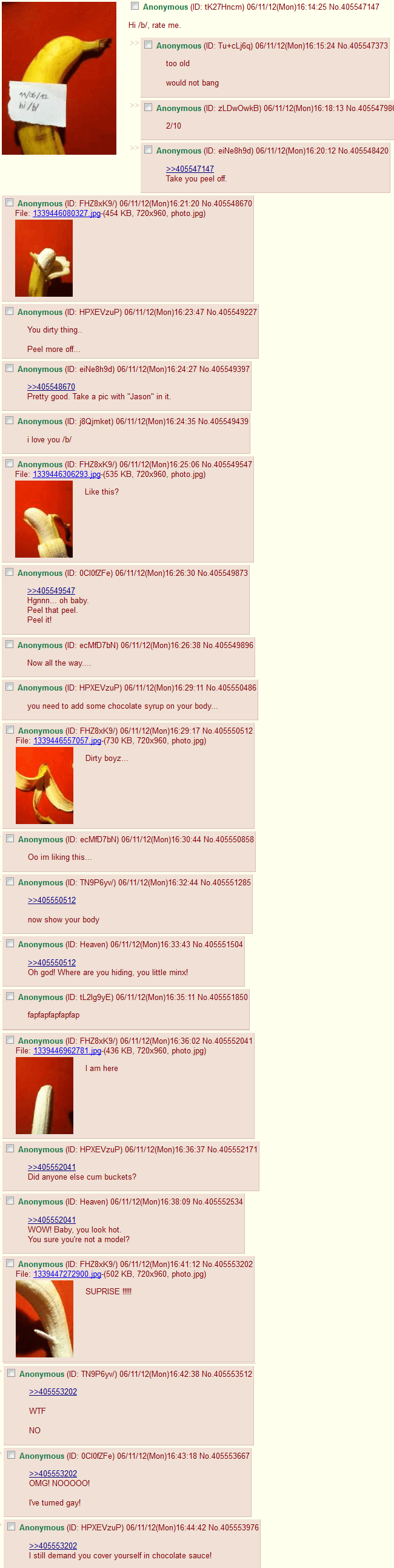 hilarious text of 4chan 39 (1)