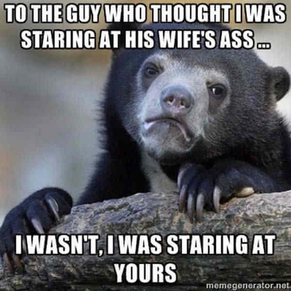 confession bear pics 4 (1)