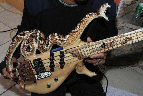 amazing guitars 2 (1)