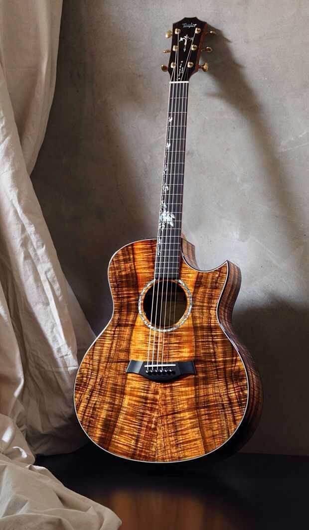 incredible guitars 25 (1)