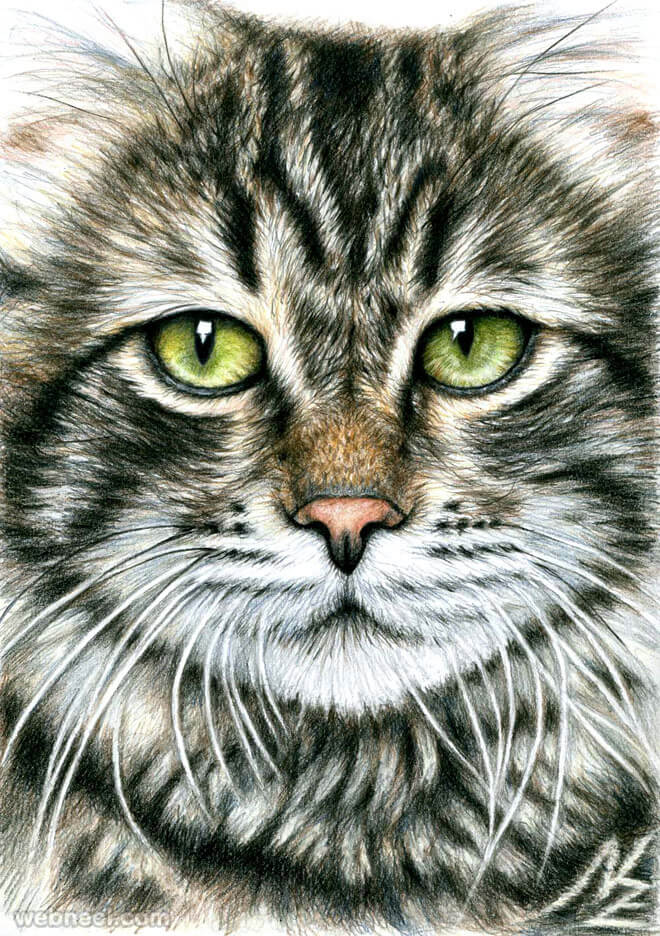26 Stunning drawings of animals Made From Pencil And Paper