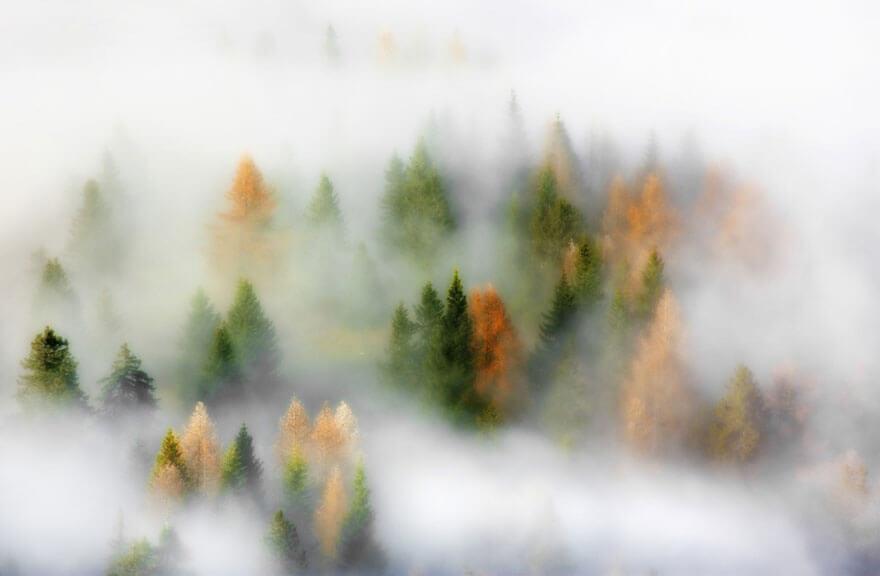 fall pics 11 (1)