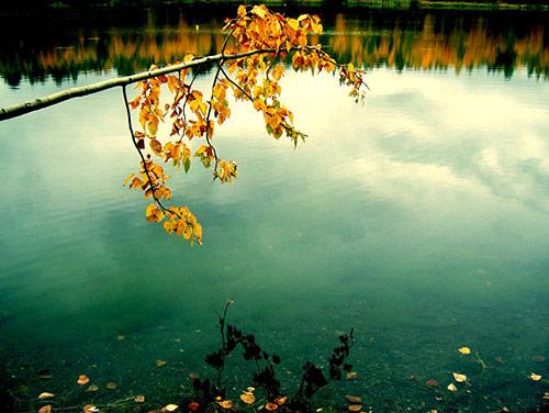 fall photos 29 (1)