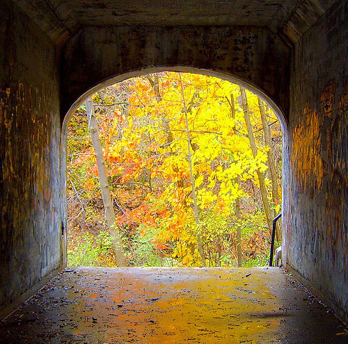 fall photos 34 (1)