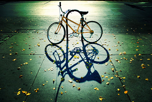 fall photos 38 (1)