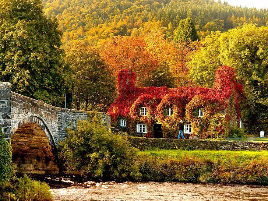 fall pics 7 (1)