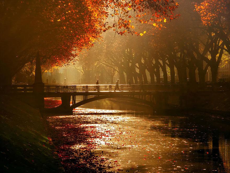 fall pics 9 (1)