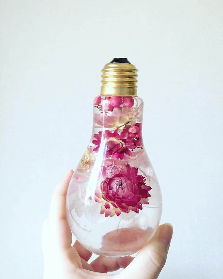 beautiful flowers inside light bulbs suspended in time