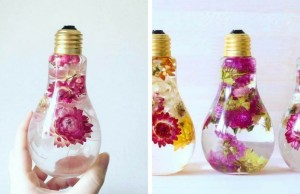 flowers inside light bulbs feat
