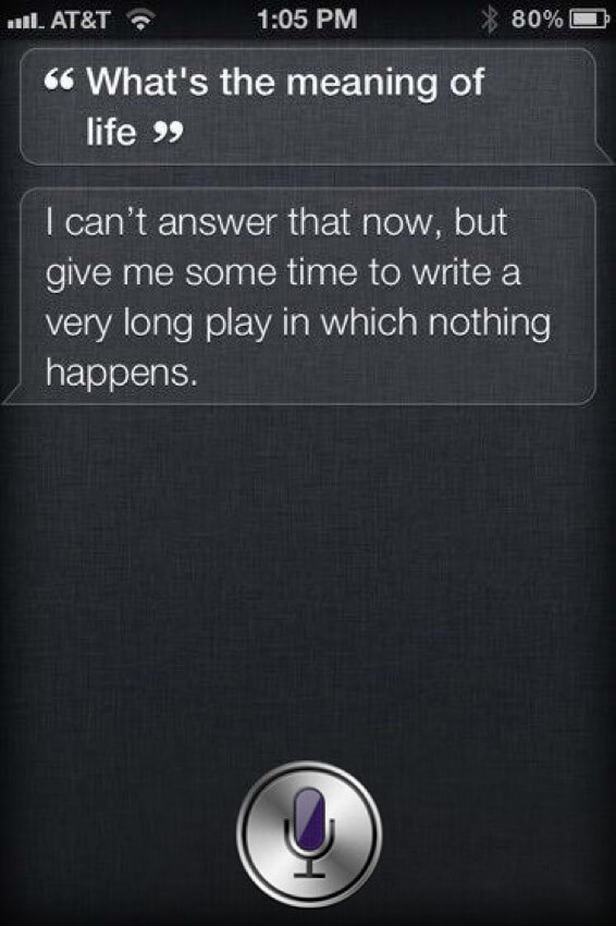 funny things to say to siri 11 (1)