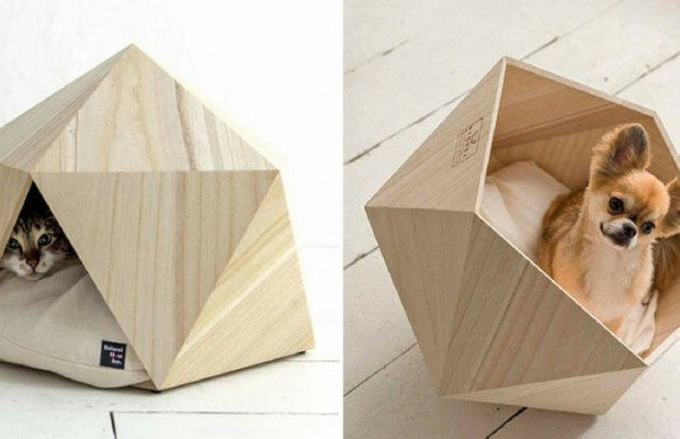 geometric pet beds feat