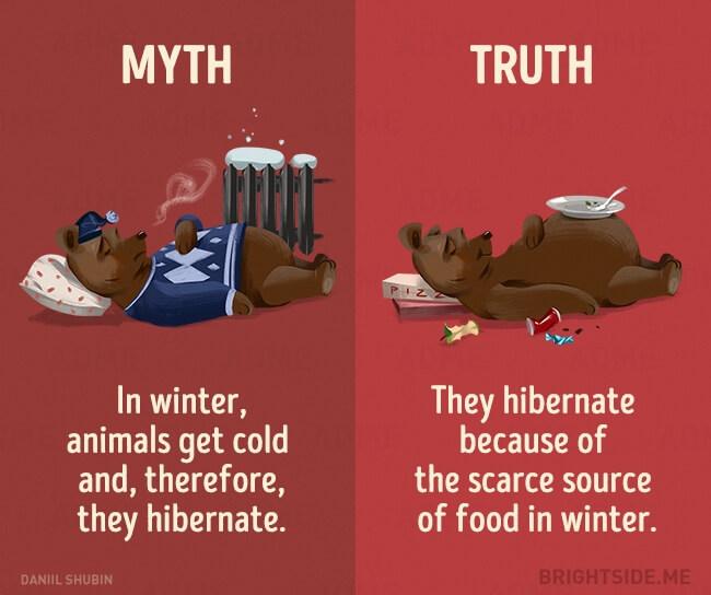 Milk movie vs reality