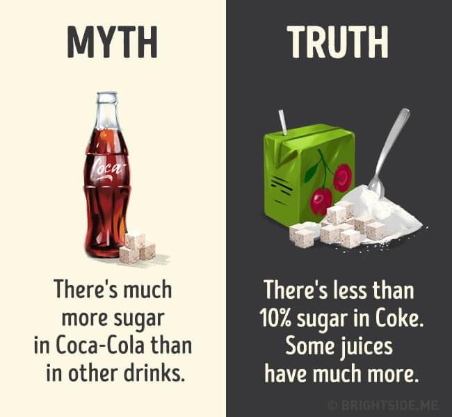 myth vs truth 13 (1)