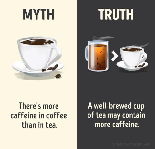 myth vs real life 16 (1)