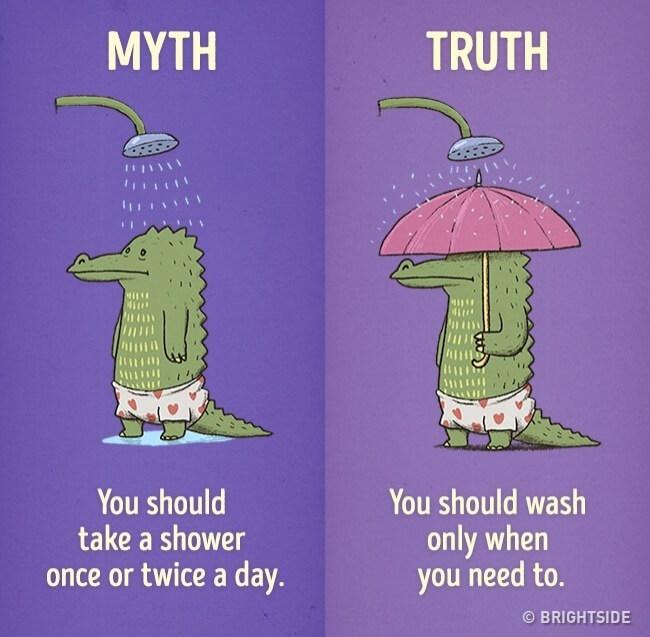 lie vs reality 35 (1)