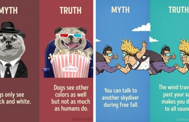 myth vs reality feat
