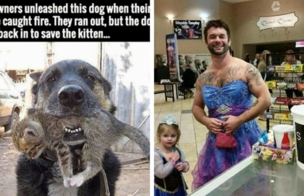 22 Examples Of Not All Heroes Wear Capes The World Deserves