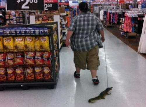 people at walmart 5 (1)