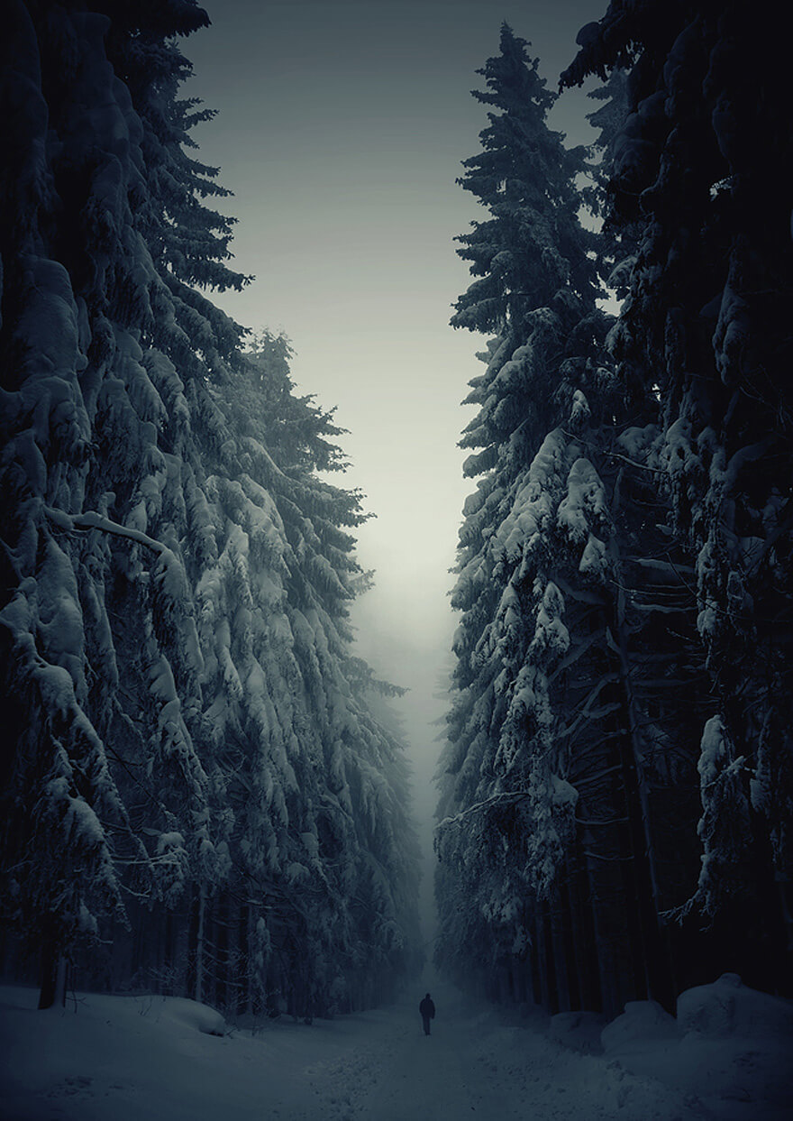 winter pictures (1)