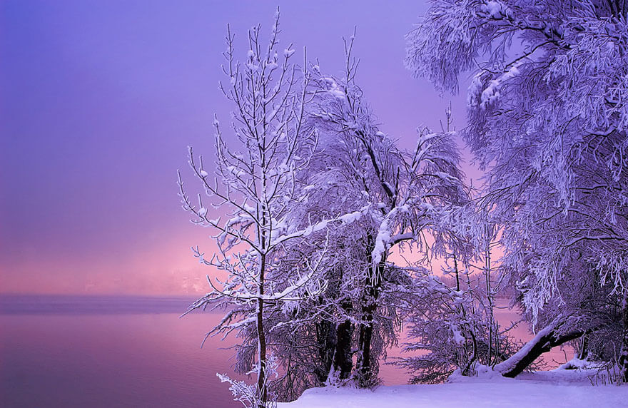 winter images 16 (1)