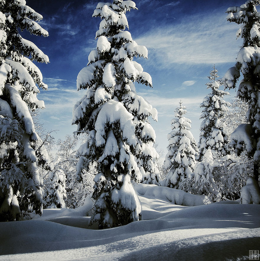 winter images 19 (1)