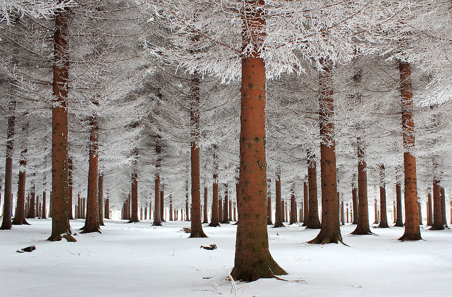 winter pictures 2 (1)